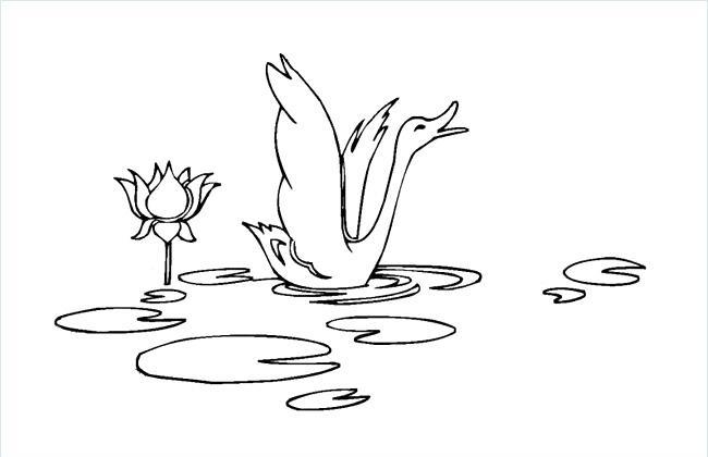 水中的大鹅简笔画图片