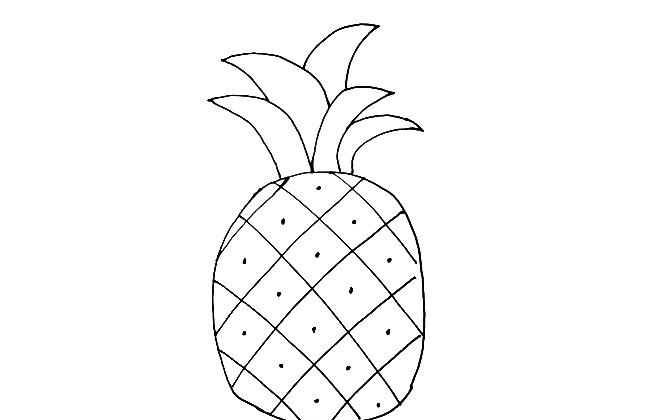 菠萝简笔画简笔画教程