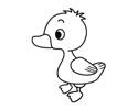 鸭子简笔画的画法和步骤