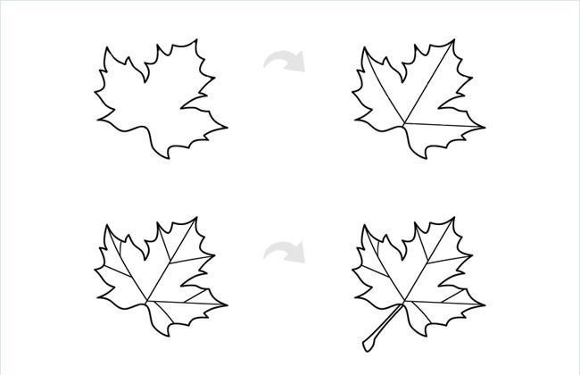 枫叶简笔画图片画法步骤